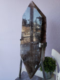 Polished Elestial Smoky Quartz Display