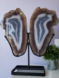 Agate Slice Wing Pair