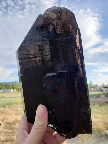 Elestial Smoky Quartz Shard