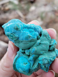 Rough Chrysocolla Specimen