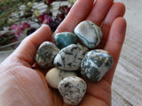 Tumbled Tree Agate (1Piece)