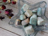 Tumbled Ruby in Fuchsite (1Piece)