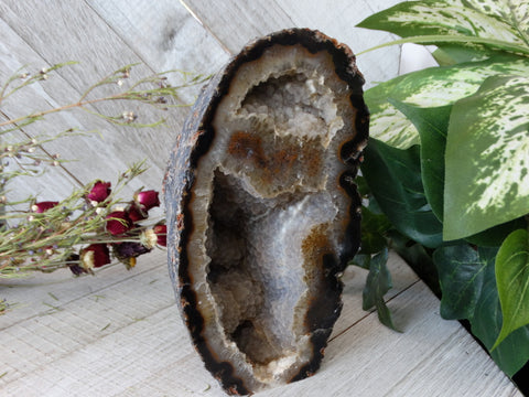 "6.9"" / 2.6 lb Polished Agate Geode"