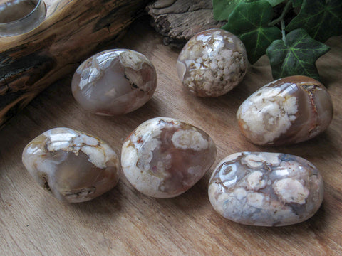 Flower Agate Palm Stones