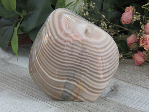"5"" Banded Agate Freeform"