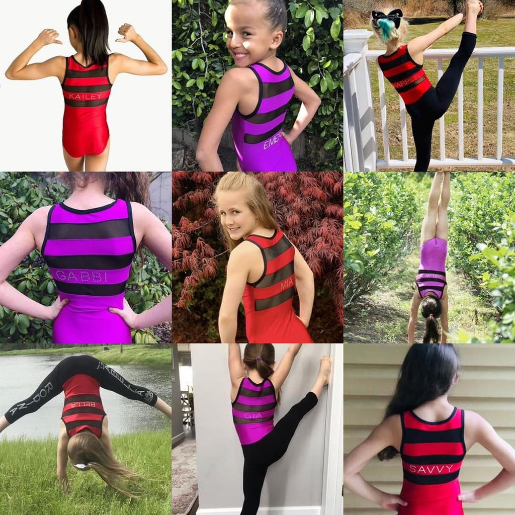 Lizatards Leotard with Mesh Top and Back in Two Colors- We can add YOUR NAME