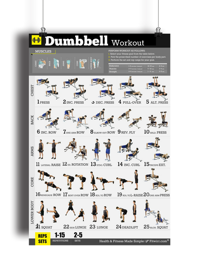 "Dumbbell Workout Exercise Poster for Men 18""X24"" Laminated - FITWIRR SHOP"