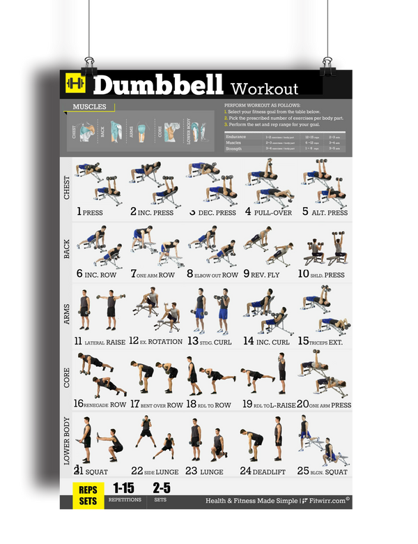 Dumbbell workout exercise poster for men quot x laminated