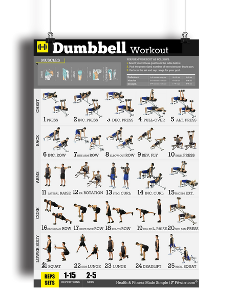 "Dumbbell Exercise Workout Poster - Laminated - 18""x24"" - FITWIRR SHOP"