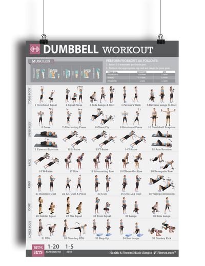 "Dumbbell Workout Exercise Poster for Women 19""X27"" Laminated - FITWIRR SHOP"
