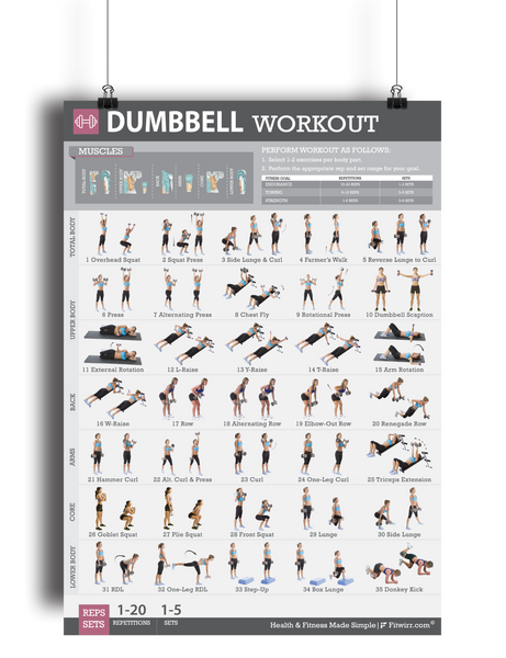 "Dumbbell Exercise Workout Poster - Laminated - 19""x27"" - FITWIRR SHOP"