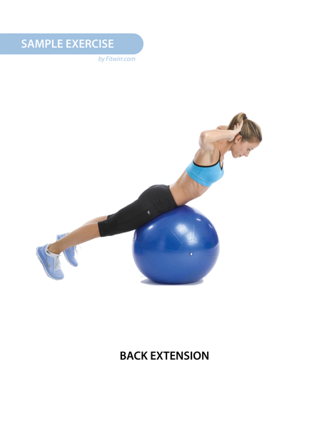 "Stability Ball Exercise Workout Poster - Laminated - 19""x27"" - FITWIRR SHOP"