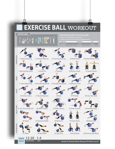 "Exercise Ball Workout Poster for Women 19""X27"" Laminated - FITWIRR SHOP"