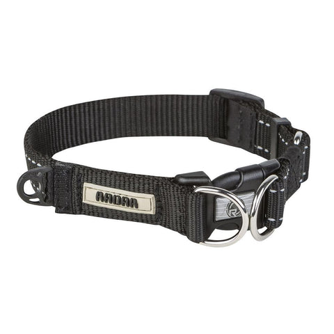2019 Radar Dog Collar - 12.5 to 18.5