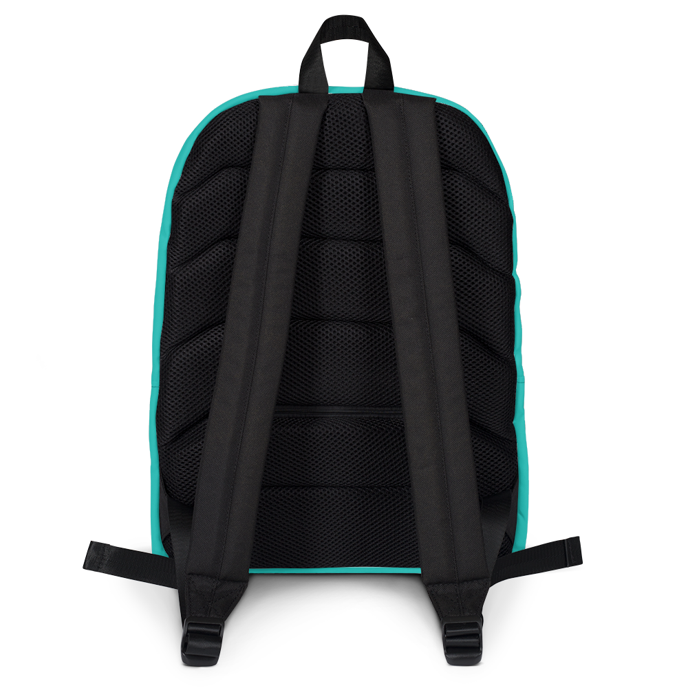 ROYAL. | Urban Resort Ra Pack Lightweight Backpack with hidden Pocket Magik Teal Zebra