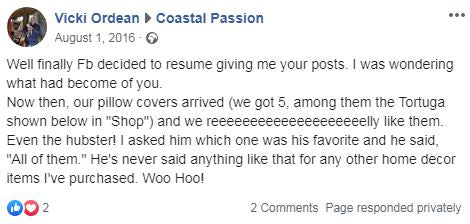 Coastal Passion review for pillow cover