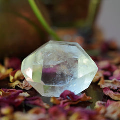 Double Terminated Penetrator Quartz of Visionary Success