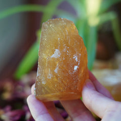 Honey Calcite of Confident Leadership (Intuitively Selected)