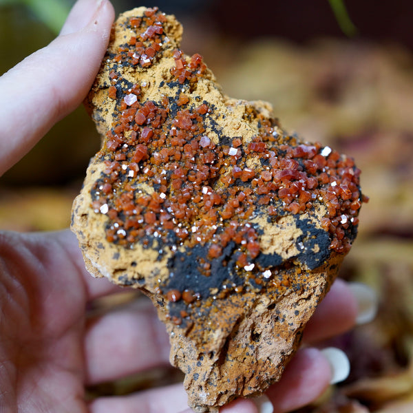Raw Vanadinite Crystal Cluster of Vital Life Force