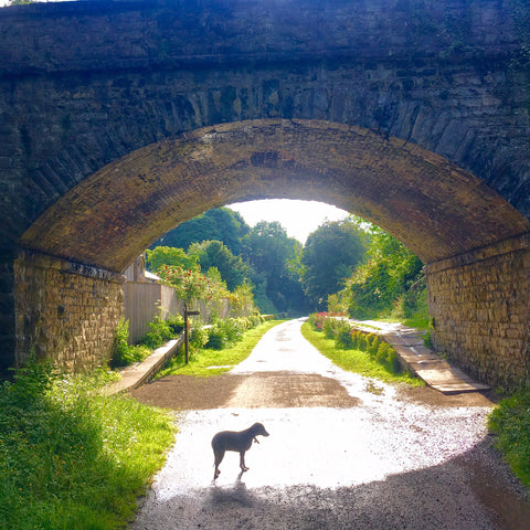 The Monsal Trail in Bakewell, Derbyshire