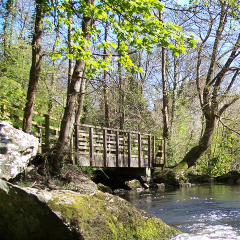 The Dingle Nature Reserve, Llangefni, Anglsey
