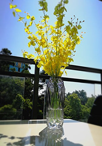 Dollar Castle & Hometopia Glass Flower Vases for Wedding Centerpieces Tall Glass Vases and Clear Glass Vases for flowers.