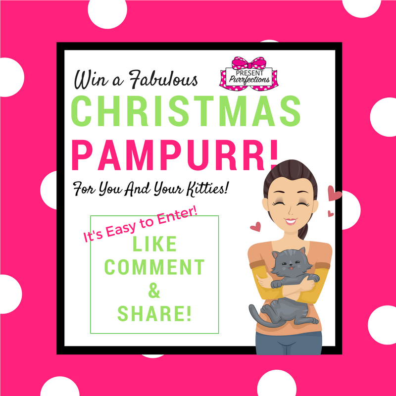 🎅🎄Win Our Christmas Pam-Purr! ⛄⭐