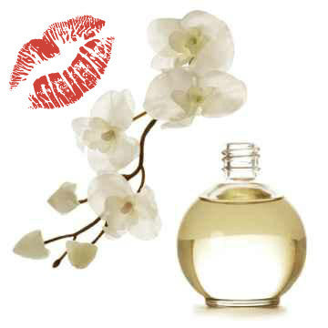 Passionate Kisses<br>Massage Oil - 10 FL OZ - Pure ONE Beauty