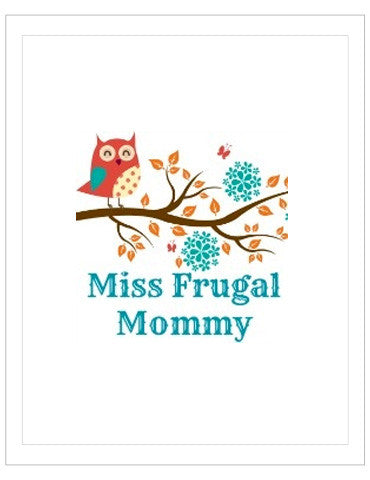 MISS FRUGAL MOMMY - BLANKET REVIEW