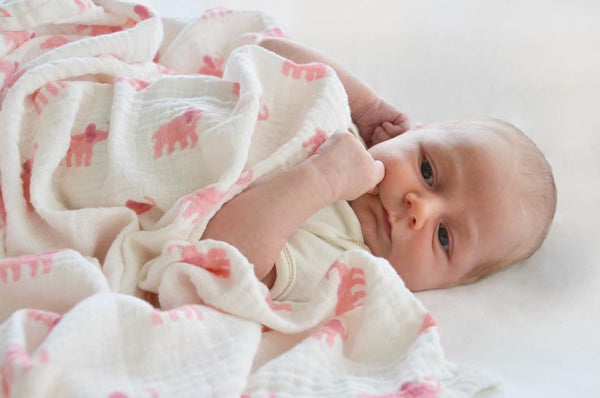 Block Printed Organic Swaddle Sets