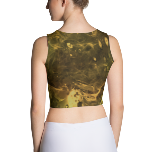 Phoenix Rising Crop top
