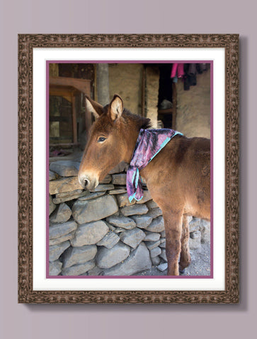 DONKEY : WALL ART