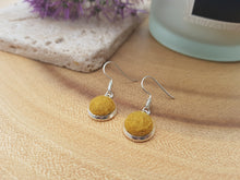 Dot Earrings - Mustard