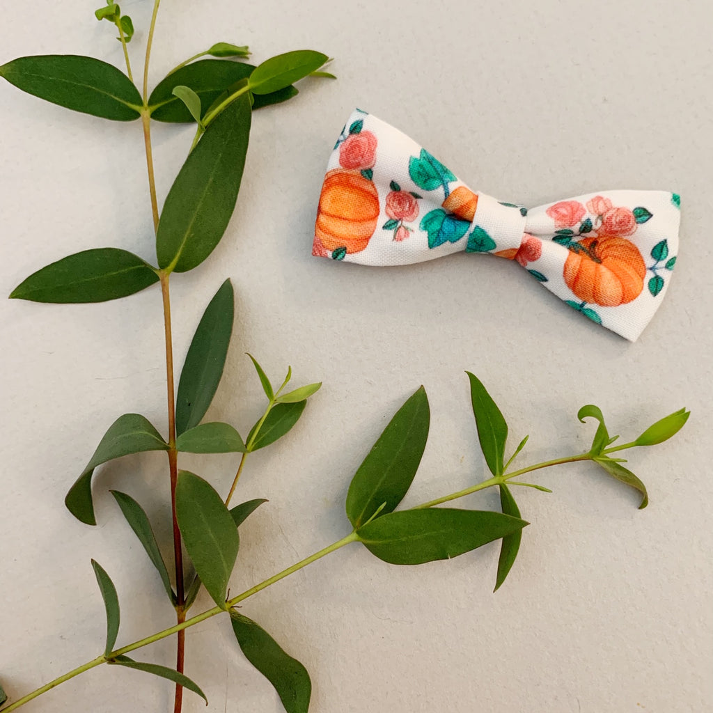 Pumpkin Patch Bow Tie - Ever Iris Designs