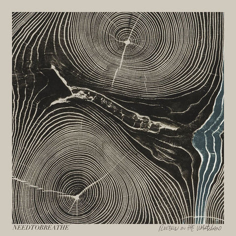 Needtobreathe: Rivers In The Wasteland CD