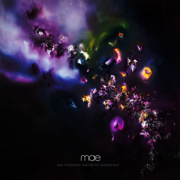 MAE: Multisensory Aesthetic Experience CD