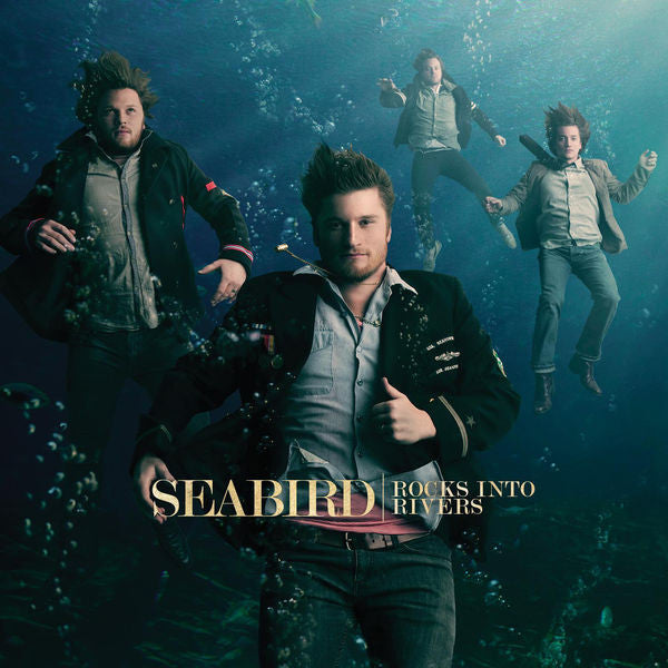 Seabird: Rocks into Rivers CD