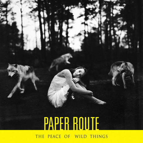 Paper Route: Peace of Wild Things CD