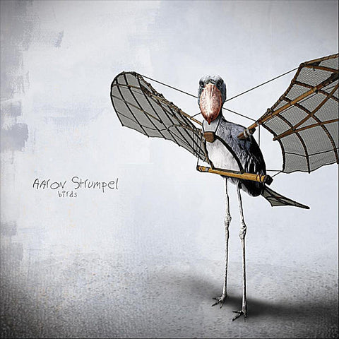 Aaron Strumpel: Birds CD