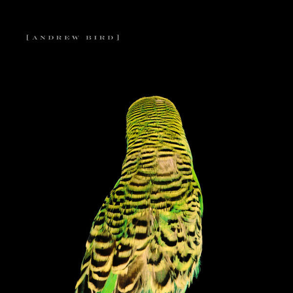 Andrew Bird: Armchair Apocrypha CD