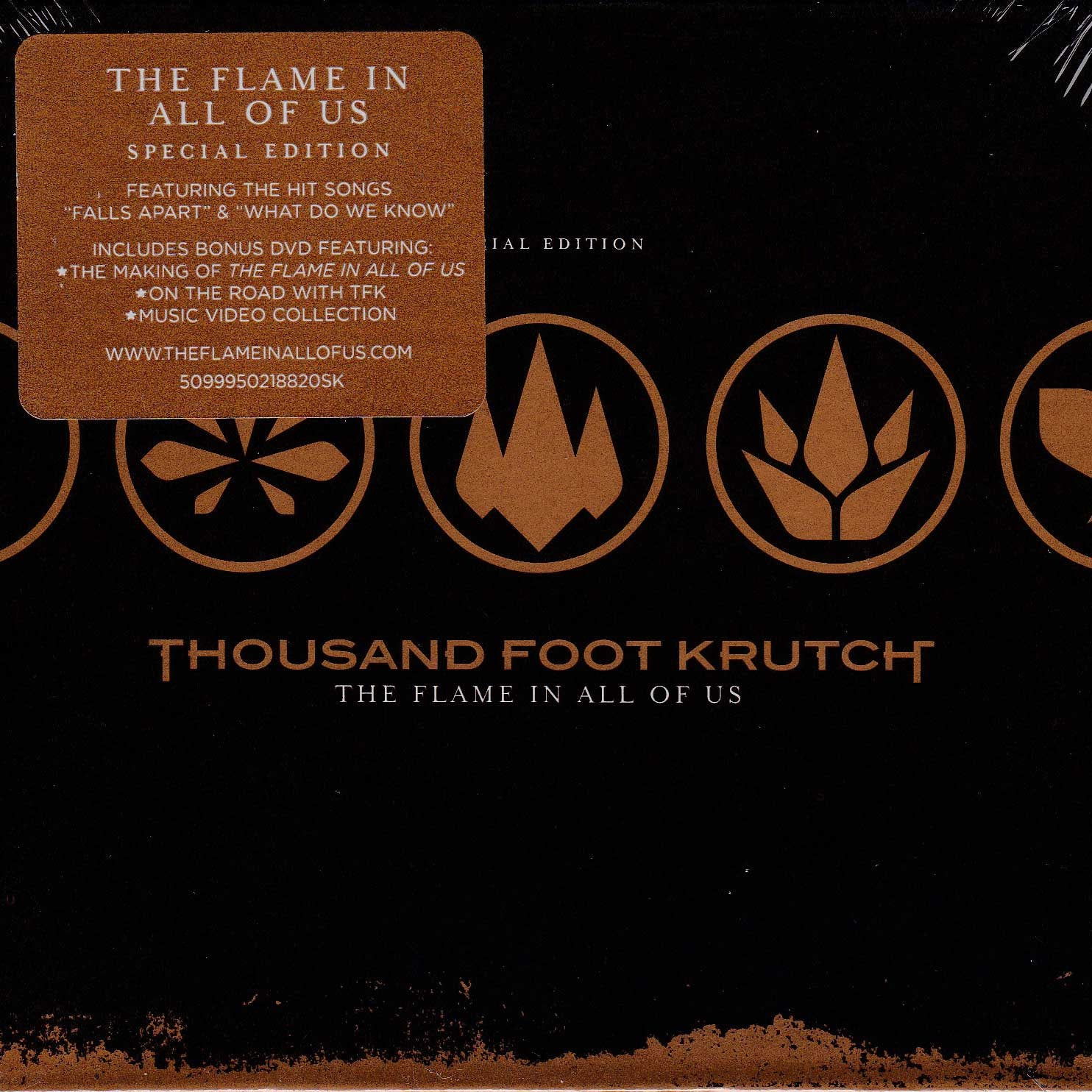 The Flame In All Of Us Special Edition CD/DVD