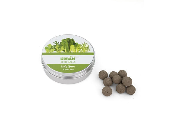 Tin of Seed Balls - Leafy Greens