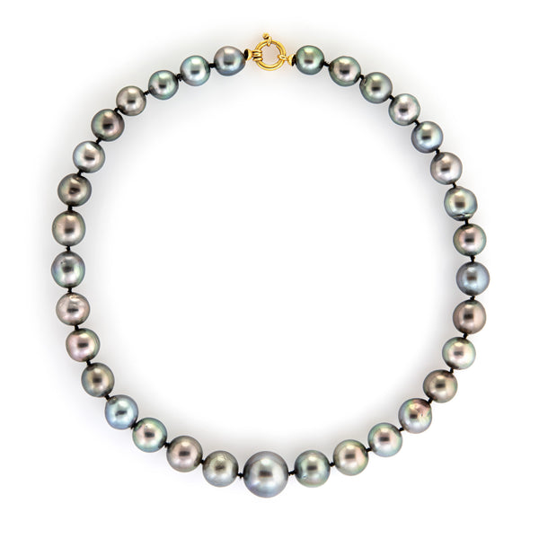 Tahitian Cultured Black Pearl Necklace Graduated 10mm to 15.5mm 18k Gold Estate