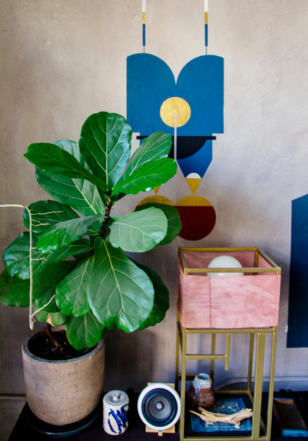 Fiddle Leaf Fig for New Bohemians 1