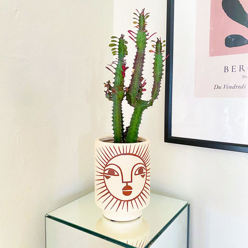 Emuna Kaya Face Pot by Justina Blakeney®