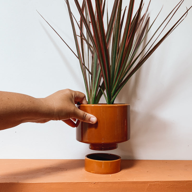 Burnt Orange Kaya Shorty Ceramic Planter by Justina Blakeney®