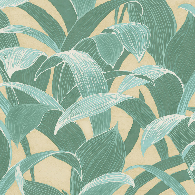 Cha Cha Wallpaper In Green