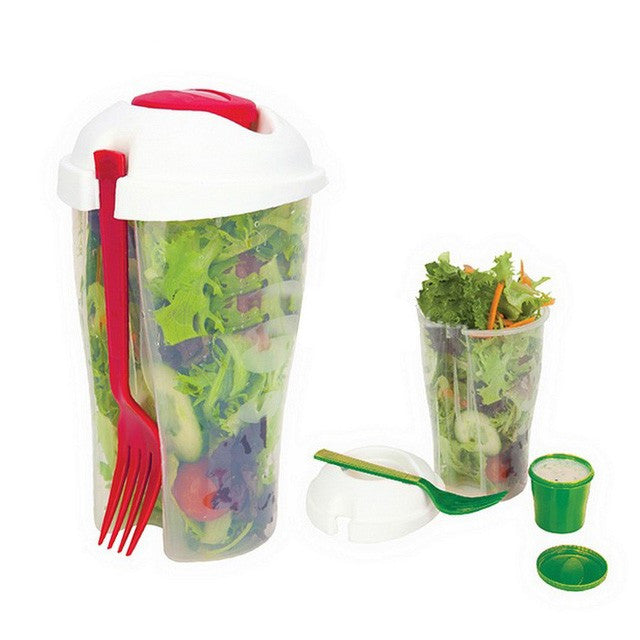 Salad to Go Container with Ice Chamber - Flash Steals