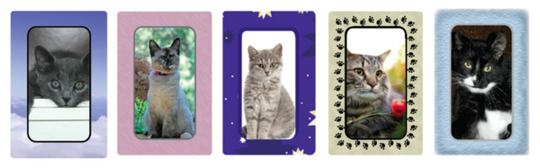 My Pet At Peace Cat Memorial Card Cremation Keepsake