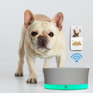 Obe ProBowl and app with french bulldog and green glow of say when technology